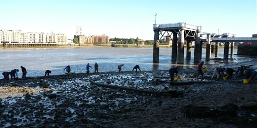 Take a Thames Discovery Walk in Rotherhithe