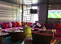 Watch the World Cup in Style